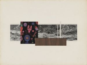 Ludwig Mies van der Rohe_Jackson Hole Residence